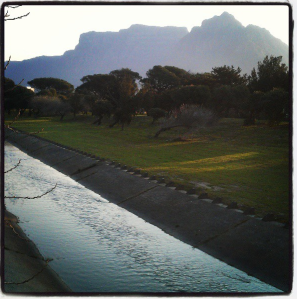 Friday evening walk with a Table Mountain view